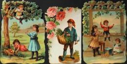 Chromo & Image - Chromo. - 3 Découpis Gaufrés - Enfants - En TB. état - Flowers