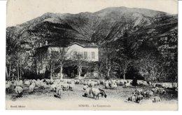 Alpes Maritimes SOSPEL La Commenda (Voir Texte Au Verso.  Mistral ?) - Sospel