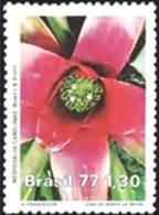 BRAZIL #1527 -  NATURE CONSERVATION - FLORA PROTECTION  - 1977  MINT - Brazil