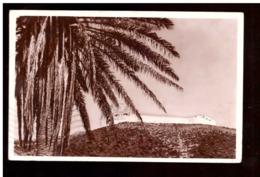 Marokko. Postkarte. Die Casba. Palmen. In Umlauf Gebracht. Stempel Entfernt. Durchschnittlicher Zustand. Leicht Falti - Agadir