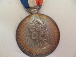 Médaille Argent De 1899 Signée Naudé - - Frankreich