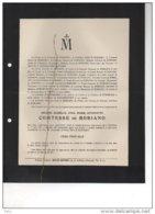 Helène De Robiano °1852 + 8/3/1916 Marchin Rousselière-Clouard LE Grelle De Gondrecourt - Avvisi Di Necrologio
