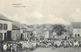 Messancy - Troupeau Du Village - Messancy
