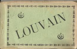 Leuven - Louvain - Boekje Met 12 Zichtkaarten, Van De Puinen, Ruines, Duitse Uitgave (Postkarte) - Oud-Heverlee