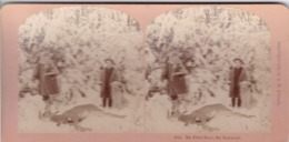 1894 / KILBURN 5015 / CHASSE / HUNTING / MY FIRST DEER / MY BOYHOOD - Stereoscopic
