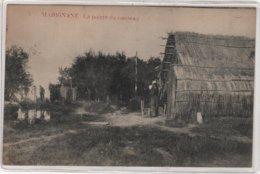 CPA 13 : 5 - MARIGNANE - La Pointe Du Ruisseau  - 1929 - Marignane