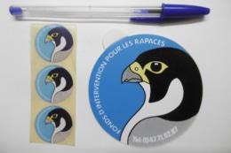 Autocollant Stickers - Thème OISEAUX - Fonds D'intervention Pour Les RAPACES - Lot De 4 Autocollants - Stickers
