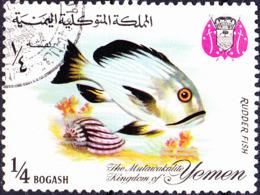 Jemen (Königreich Jemen) - Steuerbarsch (Kyphosus Sp.) (MiNr: 324) 1967 - Gest Used Obl - Yemen