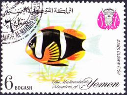 Jemen (Königreich Jemen) - Dunkler Dreibindenfisch (Amphiprion Xanthurus) (MiNr: 328) 1967 - Gest Used Obl - Yemen