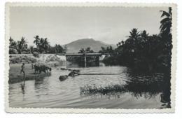 CPSM ENVIRONS DE NHATRANG, BAIN DE BUFFLES, Format 9 Cm Sur 14 Cm Environ, VIET NAM - Viêt-Nam