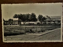 Oude Postkaart   Krijgs  -- Duivenhok  VILVOORDE - Vilvoorde