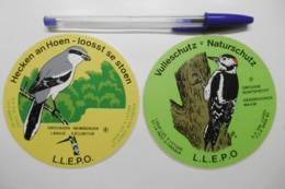 Autocollant Stickers - Thème OISEAUX - Ligue Luxembourgeoise Pour L'Etude Et La Protection Des Oiseaux - LUXEMBOURG - Stickers