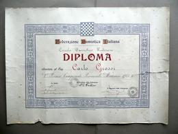 Diploma Federazione Damistica Italiana Circolo Modenese 2° Premio 1933 Modena - Vecchi Documenti