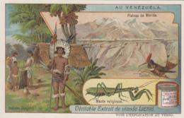 Chromos - Chromo - Pays Vénézuéla - Indiens Goajiros - Colibri - Liebig