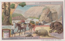 Chromos - Chromo - Pays Vénézuéla - Prospecteurs Mulets - Tatou Singe - Liebig
