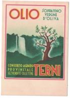 CARTOLINA POSTALE  OLIO DI OLIVA  TERNI - Pubblicitari