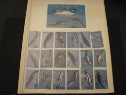 GAMBIA - 1995 DELFINI E BALENE 9 + 9 VALORI + BF - NUOVI(++) - Gambia (1965-...)