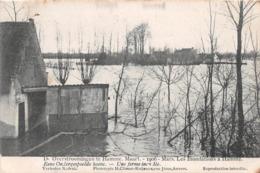 BELGIQUE - Inondations à HAMME - Mars 1906 - Une Ferme Inondée - Hamme