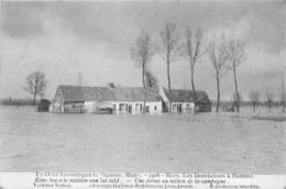 BELGIQUE - Inondations à HAMME - Mars 1906 - Une Ferme Au Milieu De La Campagne - Hamme