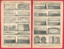 L'art De Choisir Un Fromage. Bons Et Mauvais Fromages. 1901. - Vieux Papiers