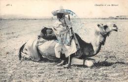 Chambba Et Son Méhari ND 488 A - Algeria