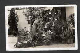 Photo Hoffmann Nr O3, Kanzler In Der Ostmark 1938, Am Elterngrab In Leonding! - Allemagne