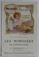 Document Publicitaire Rare 1923 Mimosées De L'Estérel Parc Mandelieu L. Paulhan Envoi De Mimosa Par Colis Postaux Avion - Reclame