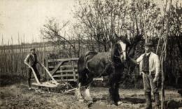 RPPC AGRICULTURA HORSE CHEVAL - Equipos