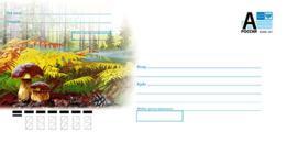 Russia 2019 Postal Stationery Cover Autumn Forest. Mushrooms - Paddestoelen