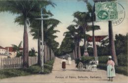 1932 BARBADOS , TARJETA POSTAL CIRCULADA , BARBADOS - PARIS , AVENUE OF PALMS - BELLEVILLE - Barbados (1966-...)