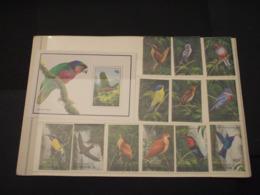 DOMINICA - 1993 UCCELLI 12 VALORI + BF  - NUOVI(++) - Dominica (1978-...)