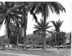 Photo R. Centrafricaine. Village De Loko, Près De La Frontière Du Congo Années 1980  Photo Vivant Univers - Afrika