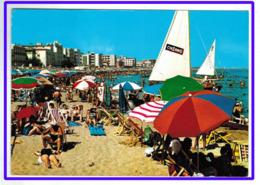 23611 CPM    CATTOLICA :  Spiaggia E I Suoi Alberghi !  Superbe  Carte Photo  1980  !!  ACHAT DIRECT !! - Rimini