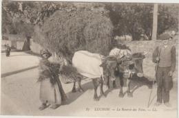 CPA  65  LUCHON LA RENTREE DES FOINS  TRES BEAU PLAN TTB - France