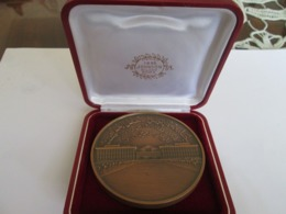 ASIAN MEDAL MADE BY JOHNSON, MILANO - ROMA, WITH BOX - Medaillen & Ehrenzeichen