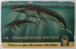 Singapore Old Phonecard Singtel Endangered Species Blue Whale Used - Telefonkarten