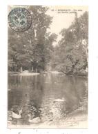 Un Coin Du Jardin Public--  (D.3086) - Bordeaux