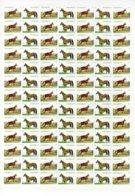 Turkmenistan 2016, Fauna, Horses Akhalteke, Big Sheet Of 91v - Turkmenistán