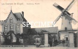 Environs De Bruges - Moulin - Oostkamp - Oostkamp