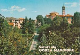 GORLA MAGGIORE - SALITA DALLA VALLE - PANORAMA - NON VIAGGIATA - Other Cities