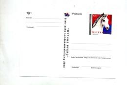 Carte Postale 0.55 Cheval - Entiers Postaux