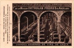 FR32 AUCH - Cave Des Vins Vieux ORTHOLAN Frères - Belle - Viñedos