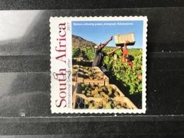 Zuid-Afrika / South Africa - Zuid-Afrikaanse Wijn, Druivenoogst 2017 - Afrique Du Sud (1961-...)