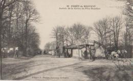 FORET DE MERVENT ARRIVEE DE LA GROTTE DU PERE MONTFORT - France