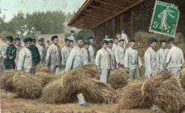 ARTILLERIE - Distribution De Paille - Regimenten