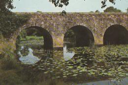 LEs LUCS-SUR-BOULOGNE. - Le Pont Sur La Boulogne Et La Rivière - Les Lucs Sur Boulogne