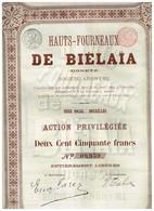 Ancienne Action - Hauts-Fourneaux De Biélaïa (Donetz) - Titre De 1899 - Titre N° 09.961 - Russia