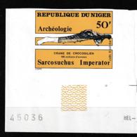 Niger. Fossile. Crane De Crocodilien. Non-dentelé. Bord De Feuille - Fossils