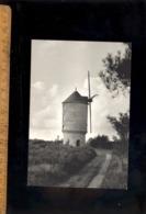 LA ROCHE BERNARD Morbihan 56 : Un Moulin à Vent Dans La Région De La Roche Bernard / Photo C Amiaud - La Roche-Bernard