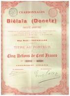 Lot De 3 Titres: 1 Charbonnages De Biélaïa 1895 -  2 Hauts Fourneaux De Bélaïa (action Ordinaire Et Privilégiée) 1899 - Rusia